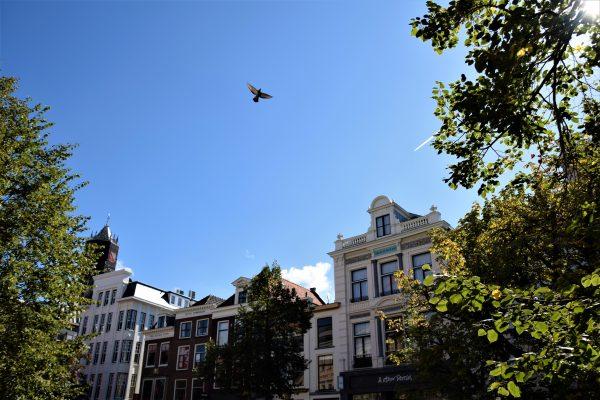 Vaarwel, Utrecht